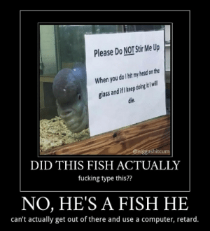 Fucking, Head, and Computer: Please Do NOT Stir Me Up  When you do I hit my head on the  glass and if I keep doing it I will  die.  @niggashitcum  DID THIS FISH ACTUALLY  fucking type this??  NO, HE'S A FISH HE  can't actually get out of there and use a computer, retard. Fucking stupid fucking