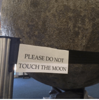 Moon, The Moon, and Touch: PLEASE DO NOT  TOUCH THE MOON
