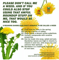 Dandelions don't deserve to be called weeds!   [Via GMO Free USA]: PLEASE DON'T CALL ME  A WEED. AND IF YOU  COULD ALSO STOP  USING THAT AWFUL  ROUNDUP STUFF ON  ME, THAT WOULD BE  NICE TOO  6 REASONS DANDELIONS DON'T DESERVE TO BE CALLED A WEED  01. First food for bees in the spring.  02 can be a source of rubber.  03. Roots make a decent coffee substitute.  04. Contain compounds with curative  properties.  05. Can be made into soup, salad and jam.  Dandelion leaves are high in vitamin A,  vitamin C and iron, with more iron and  calcium than spinach.  06. Dandelion is a traditional ingredient  of root beer.  www.gmofreeusa.org  www.facebook.com/gmofreeusa  www.facebook.com/gmofreecanadagroup Dandelions don't deserve to be called weeds!   [Via GMO Free USA]