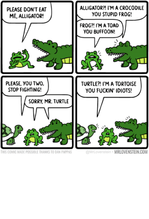 omg-images:  Disorder.: PLEASE DON'T EAT  ME, ALLIGATOR!  ALLIGATOR?! I'M A CROCODILE  YOU STUPID FROG!  FROG?! I'M A TOAD  YOU BUFF00N!  PLEASE, YOU TWO.  STOP FIGHTING!  TURTLE?! I'M A TORTOISE  YOU FUCKIN' IDIOTS!  SORRY, MR. TURTLE  THIS COMIC MADE POSSIBLE THANKS TO DAN PAPPAS  @MrLovenstein MRLOVENSTEIN.COM omg-images:  Disorder.