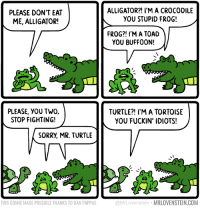 Memes, Sorry, and Alligator: PLEASE DON'T EAT  ME, ALLIGATOR!  PLEASE, YOU TWO,  STOP FIGHTING!  SORRY MR. TURTLE  THIS COMIC MADE POSSIBLE THANKS TO DAN PAPPAS  ALLIGATOR?! I'M A CROCODILE  YOU STUPID FROG!  FROG?! I'M A TOAD  YOU BUFFOON!  TURTLE?! I'M A TORTOISE  YOU FUCKIN IDIOTS!  MRLOVENSTEIN.COM  @MrLovenste What did you call me?!  Secret Panel HERE! 🐸🐊🐢 http://www.mrlovenstein.com/comic/823