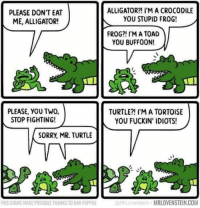 Memes, Sorry, and Alligator: PLEASE DON'T EAT  ME, ALLIGATOR!  PLEASE, YOU TWO,  STOP FIGHTING!  SORRy, MR. TURTLE  THIS COMIC MADE POSSIBLE THANKS TO DAN PAPPAS  ALLIGATOR?! I'M A CROCODILE  YOU STUPID FROG!  FROG I'M A TOAD  YOU BUFFOON!  TURTLE?! I'M A TORTOISE  YOU FUCKIN' IDIOTS!  MRLOVENSTEIN COM