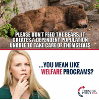 Memes, Bears, and Mean: PLEASE DONT FEED THE BEARS IT  CREATES A DEPENDENT POPULATION  UNABLE TO TAKE CARE OF THEMSELVES .  YOU MEAN LIKE  WELFARE PROGRAMS?  二)  TURNING  POINT USA Hmm... 🤔🤔🤔