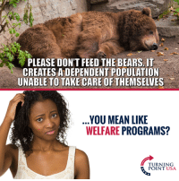 Memes, Bears, and Mean: PLEASE DON'T FEED THE BEARS. IT  CREATES A DEPENDENT POPULATION  UNABLE TO TAKE CARE OFTHEMSELVES  YOU MEAN LIKE  WELFARE PROGRAMS?  TURNING  POINT USA YUP! #BigGovSucks