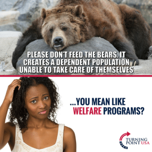 Welfare In A Nutshell... #BigGovSucks: PLEASE DON'T FEED THE BEARS, IT  CREATES A DEPENDENT POPULATION  UNABLE TO TAKE CARE OF THEMSELVES  YOU MEAN LIKE  WELFARE PROGRAMS?  TURNING  POINT USA Welfare In A Nutshell... #BigGovSucks