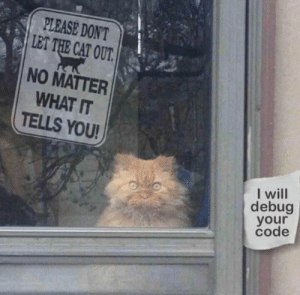 Haha, Cat, and Code: PLEASE DON'T  LET THE CAT OUT  NO MATTER  WHAT IT  TELLS YOU!  I will  debug  your  code Haha