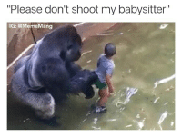 """Dicks out for Harambe: """"Please don't shoot my babysitter""""  IG: @Meme ang Dicks out for Harambe"""