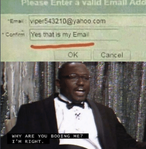 Viper has Big brain time by leosk8s MORE MEMES: Please Enter a valld Email Add  Emai:viper543210@yahoo.com  Confirm  Yes that is my Email  OK  Cancel  WHY ARE You BOOING ME?  I'M RIGHT Viper has Big brain time by leosk8s MORE MEMES