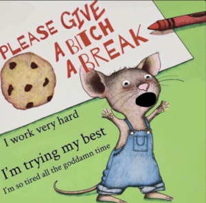 Who the fuck wrote this book about me: PLEASE GIVE  A BITCH  A BREAK  CIVAY  I work very hard  I'm trying my best  I'm so tired all the goddamn time Who the fuck wrote this book about me