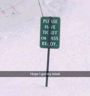 Ass, Dank, and Memes: PLEASE  HAVE  TICKET  OR ASS  READY  Hope I got my ticket MeIrl by Gringo_McBingo MORE MEMES