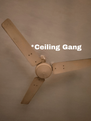 Please Help! Why is this Ceiling Gang helping me(a floor gang boi)? What are his hidden motives?: Please Help! Why is this Ceiling Gang helping me(a floor gang boi)? What are his hidden motives?