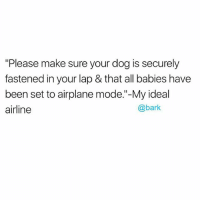 "Memes, Airplane, and Been: ""Please make sure your dog is securely  fastened in your lap & that all babies have  been set to airplane mode.""-My ideal  airline  @bark 🙏🏼✈️ dogpeoplegetit"