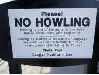"""Fucking, Run, and Target: Please!  NO HOWLING  Howling is one of the many unique ways  Wolves communicate with each other  Howling by Visitors to imitate Wolf language  may seem like fun to humans but it is  meaningless and irritating to Wolves  Thank You!  Cougar Mountain Zoo <p><a class=""""tumblr_blog"""" href=""""http://elphabaforpresidentofgallifrey.tumblr.com/post/150625993673"""" target=""""_blank"""">elphabaforpresidentofgallifrey</a>:</p> <blockquote> <p><a class=""""tumblr_blog"""" href=""""http://katie-pup.tumblr.com/post/150619642295"""" target=""""_blank"""">katie-pup</a>:</p> <blockquote> <p>don't awoo<br/></p> </blockquote> <p>""""don't appropriate wolf culture"""" this zoo is run by fucking sjws trying to create some kind of safe space bullshit</p> </blockquote>"""