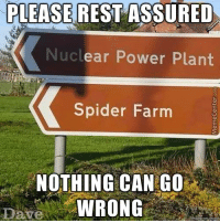 I have a bad feeling about this...: PLEASE REST ASSURED  Nuclear Power Plant  Spider Farm  NOTHING CAN GO  WRONG  Dave I have a bad feeling about this...