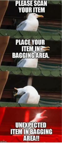 "Memes, Http, and Time: PLEASE SCAN  YOUR ITEM  PLACE YOUR  ITEM IN  BAGGINGAREA.  UNEXPECTED  ITEM IN BAGGING  AREA!!  moflip com <p>Every. Damn. Time&hellip; via /r/memes <a href=""http://ift.tt/2paXbjh"">http://ift.tt/2paXbjh</a></p>"
