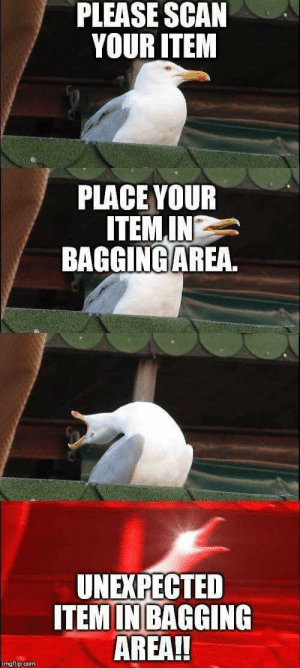 Every God damm time by sp1c3ym3m35 FOLLOW 4 MORE MEMES.: PLEASE SCAN  YOUR ITEM  PLACE YOUR  ITEMIN  BAGGING AREA.  UNEXPECTED  ITEMIN BAGGING  AREA!!  imgflip.com Every God damm time by sp1c3ym3m35 FOLLOW 4 MORE MEMES.
