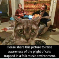 Memes, Trap, and Trapping: Please share this picture to raise  awareness of the plight of cats  trapped in a folk music environment. :D