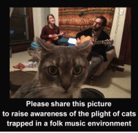 Memes, Trap, and Trapping: Please share this picture  to raise awareness of the plight of cats  trapped in a folk music environment #It's a Cats astrophy #Paws for thought #Nothing more than Felines #All around my Cat #Tails of the Unexpected #Etc, etc, etc... 🐱🐱🐱