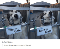 Such a cute puppy!: Please  the  thefamilyjuless:  No no please open the gate let him out  Please  the Such a cute puppy!