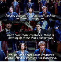 ✎✐✎ ↯ ⇢ It was a struggle to make this because I can't actually find any sites that have all the Fantastic Beasts screencaps, so I downloaded a trailer and screenshotted some moments lol ↯ ⇢ I'm actually so sleep deprived omg :') but you know what I'm going to do? Binge watch all the Marvel shows again ↯ ⇢ Go follow the account tagged because they're featured for the week! if you want to be featured for a week on my account simply tag your posts to PotterWeeklyAccount :) ✎✐✎ Birthday(s) Of The Day 👇🏼🎂🎉 ⇢ [ please notify me if it is your birthday today! ] ✎✐✎ My Other Accounts: ⇢ @TheWizardWeekly - [ account for blended-video-aesthetic edits ] ⇢ @MarvelsWomen - [ co-owned Marvel account ] ⇢ @HPTexts - [ co-owned Harry Potter text messages account ] ⇢ @LumosTutorials - [ co-owned instagram tutorial account ] ✎✐✎ QOTD : What fandom are you currently really obsessed with? AOTD : Daredevil, omg I've literally dug myself a hole and I can't get back out: Please, you don't understand, nothing  in there is dangerous.  potterweekly  Don't hurt those creatures, there is  nothing in there that's dangerous.  potterweekly  No, no, don't hurt those creatures  please! Please, they are not dangerous! ✎✐✎ ↯ ⇢ It was a struggle to make this because I can't actually find any sites that have all the Fantastic Beasts screencaps, so I downloaded a trailer and screenshotted some moments lol ↯ ⇢ I'm actually so sleep deprived omg :') but you know what I'm going to do? Binge watch all the Marvel shows again ↯ ⇢ Go follow the account tagged because they're featured for the week! if you want to be featured for a week on my account simply tag your posts to PotterWeeklyAccount :) ✎✐✎ Birthday(s) Of The Day 👇🏼🎂🎉 ⇢ [ please notify me if it is your birthday today! ] ✎✐✎ My Other Accounts: ⇢ @TheWizardWeekly - [ account for blended-video-aesthetic edits ] ⇢ @MarvelsWomen - [ co-owned Marvel account ] ⇢ @HPTexts - [ co-owned Harry Potter text messages account ] ⇢ @LumosTutorials - [ co-owned instagra