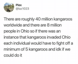 meirl: Plex  @laz1023  There are roughly 40 million kangaroos  worldwide and there are 8 million  people in Ohio so if there was an  instance that kangaroos invaded Ohio  each individual would have to fight off a  minimum of 5 kangaroos and idk if we  could do it meirl