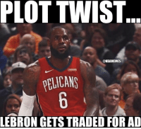 Is LeBron for Anthony Davis a good trade? 😳: PLOT TWIST  @NBAMEMES  ELICANS  LEBRON GETS TRADED FOR AD Is LeBron for Anthony Davis a good trade? 😳