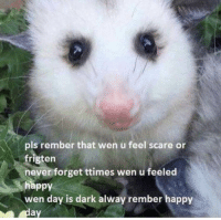 Memes, Scare, and Happy: pls rember that wen u feel scare or  frigten  never forget ttimes wen u feeled  happy  wen day is dark alway rember happy  ay https://t.co/BCd4saebhU