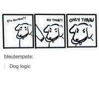 Logic, Memes, and Pink: pls throw??  bleutempete:  Dog logic  No TAKE ONLY THROW My dog basically 😂👌🏻 (thank you so much for 22k!! 😊💕) ♥ 🌿| QOTP : favorite color combination? 🌸| AOTP : pink and white ❤️ ♥ Want me to post one of your memes? Just use the hashtag -kawaiimemez 😚 ♥ 🌷| Tags : meme memes clean cleanmeme cleanmemes lol lolol ha haha omg dying crying laughing laugh laughoutloud goofy hilarious wow kawaii kawaiimemeteam relatable joke jokes kawaiimeme