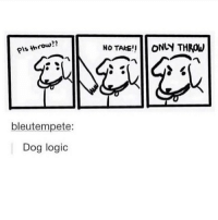 "Logic, Memes, and 🤖: pls throw  bleutempete:  Dog logic  No TAKE ONLY THROW we had this whole dogs vs. cats debate in history class and I'm over here like ""does it matter both of them are memeable"" - Max textpost textposts"