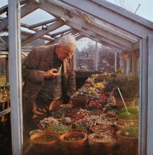 Apparently, Books, and Tumblr: pluckypalaeontologist: pinecounty:   necroluste:   J.R.R Tolkien, looking at flowers.   Apparently people hated to go for walks with him because he would stop and look at every tree for like 20 minutes.   EXPLAINS THE BOOKS
