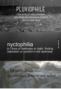 This is my kind of combo.: PLUVIOPHILE  n) a lover of rain; someone  who finds joy and peace of mind  during rainy days  nyctophilia  (n.) love of darkness or night. finding  relaxation or comfort in the darkness  clinomania  (n.) excessive desire to stay in bed This is my kind of combo.