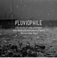 It's currently raining and I'm listening to calming music and I feel very peaceful right now it's nice: PLUVIOPHILE  (n) a lover of rain; someone  who finds joy and peace of  min  during rainy days It's currently raining and I'm listening to calming music and I feel very peaceful right now it's nice