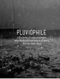 rainy days: PLUVIOPHILE  (n) a lover of rain; someone  who finds joy and peace of mind  during rainy days