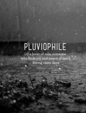 rainy: PLUVIOPHILE  (n) a lover of rain; someone  who finds joy and peace of mind  during rainy days
