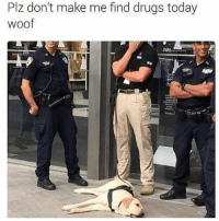 Drugs, Memes, and Today: Plz don't make me find drugs today  woof I feel you buddy, it's too hot @dogsbeingbasic