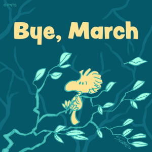 Memes, 🤖, and March: PNTS  Bye, March Goodbye, March!