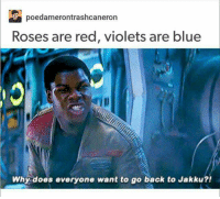 This will never fail to make me laugh Hope everyone who celebrated Valentines had a great one xx. ~ Dark Willow: Poedamerontrashoeaneron  Roses are red, violets are blue  Why does everyone want to go back to Jakku?! This will never fail to make me laugh Hope everyone who celebrated Valentines had a great one xx. ~ Dark Willow