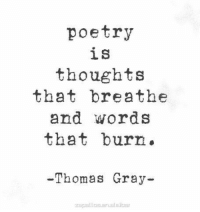 Poetry, Thomas, and Words: poetry  is  thoughts  that breathe  and words  that burn.  -Thomas Gray-