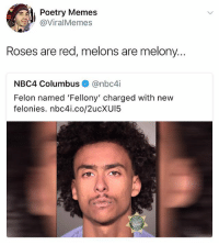 Chipotle, Meme, and Memes: Poetry Memes  @ViralMemes  Roses are red, melons are melony...  NBC4 Columbus@nbc4i  Felon named 'Fellony' charged with new  felonies. nbc4i.co/2ucXU15 @ship is like the meme equivalent to Chipotle without the ecoli