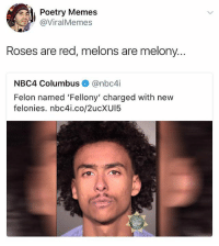 Funny, Memes, and Poetry: Poetry Memes  @ViralMemes  Roses are red, melons are melony.  NBC4 Columbus@nbc4i  Felon named 'Fellony' charged with nevw  felonies. nbc4i.co/2ucXUI5 Even though this is utter stupidity I laughed SO YOU BETTER LAUGH TOO (@thefunnyintrovert)