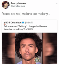 🤣WTH: Poetry Memes  @ViralMemes  Roses are red, melons are melony...  NBC4 Columbus @nbc4i  Felon named 'Fellony' charged with new  felonies. nbc4i.co/2ucXUI5 🤣WTH