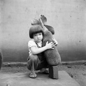 poetryconcrete:Boy with a jackfruit, photo by Haruo Ohara, c.1950, at Arara Ranch, in Brazil.: poetryconcrete:Boy with a jackfruit, photo by Haruo Ohara, c.1950, at Arara Ranch, in Brazil.