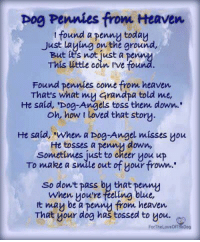 "Heaven, Pog, and Grandpa: pog Pennies from Heaven  t found a penny today  Just Laying on the ground,  But tt's not just a penn  This úttle coin ive fou  Found pennies come from heaven  Thats what my Grandpa told me,  He said, 'Dog-Angels toss them down..  oh, how t loved that story  He said, ""when a Dog-Angel misses you  He tosses a penny down,  Sonmetimes just to cheer you up  To make a smile out of your frown.  So dont pass by that penny  when youre feeling blue,  t mau be a pennu from heaven  That your dog has tossed to you.  ForTheLoveOfT  ieDog"
