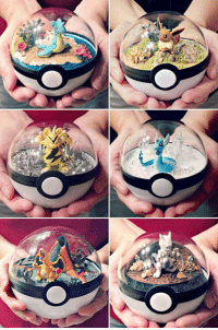 Pokeball Terrariums Found them here: http://tidd.ly/356748a2: Pokeball Terrariums Found them here: http://tidd.ly/356748a2