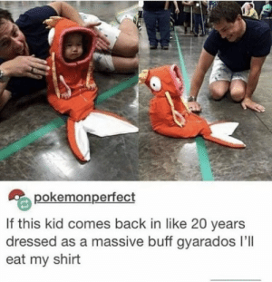 Memes, Back, and 🤖: pokemonperfect  If this kid comes back in like 20 years  dressed as a massive buff gyarados l'll  eat my shirt https://t.co/6nadgUNYjr