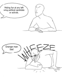 Left Wing Political