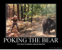 Happy Friday Everyone!: POKING THE BEAR  Its a form of redneck natural selection  Eric Slacktish Happy Friday Everyone!