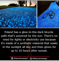 Memes, Bicycle, and Sunset: Poland has a glow-in-the-dark bicycle  path that's powered by the sun. There's no  need for lights or electricity use because  it's made of a synthetic material that soaks  in the sunlight all day and then glows for  up to 10 hours after sunset.  囝/didyouknowpagel  @didyouknowpage