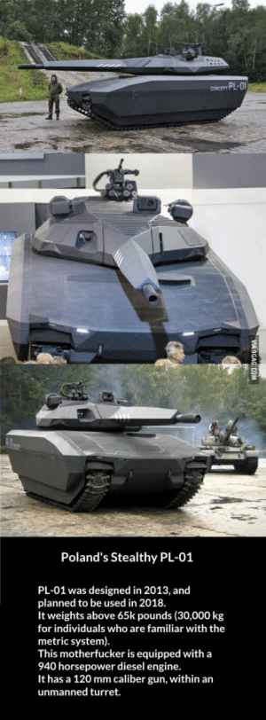 Diesel, Gun, and Metric: Poland's Stealthy PL-01  PL-01 was designed in 2013, and  planned to be used in 2018  It weights above 65k pounds (30,000 kg  for individuals who are familiar with the  metric system)  This motherfucker is equipped with a  940 horsepower diesel engine.  It has a 120 mm caliber gun, within an  unmanned turret. PL-01 Polish armored fighting vehicle.