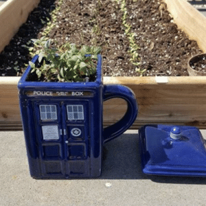 Police, Tumblr, and Blog: POLICE BOX scifiseries:  Thyme Lord Planter